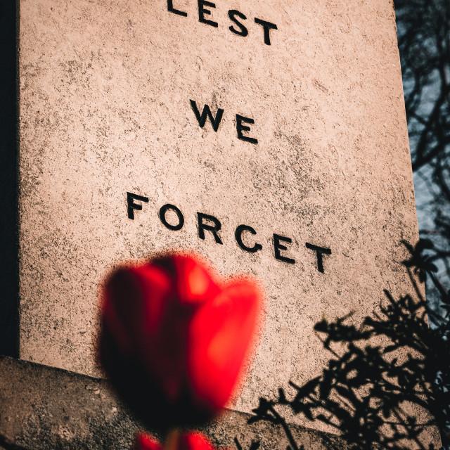 """""""War Memorial, Cambridge UK."""" stock image"""