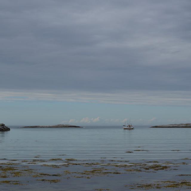 """""""fishing boat in harbor"""" stock image"""