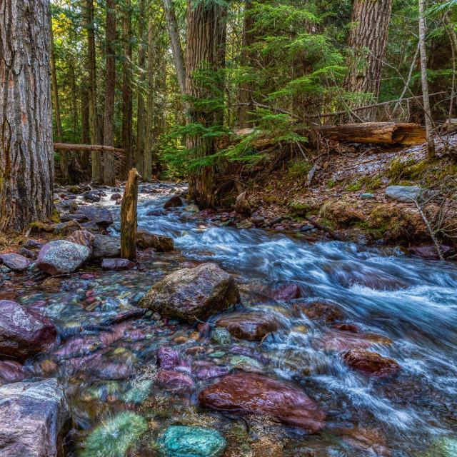 """vacation-lake mcdonald-glacier-national park-travel"" stock image"