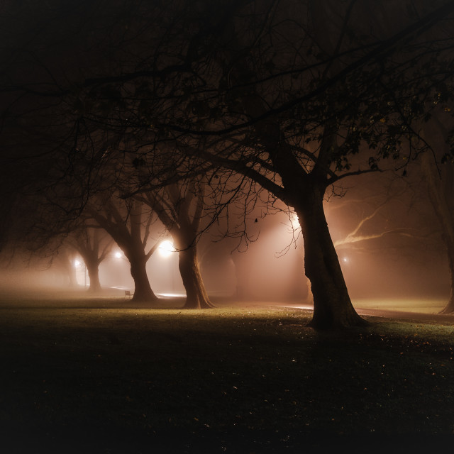 """""""A foggy Evening from Jesus Green, Cambridge UK."""" stock image"""