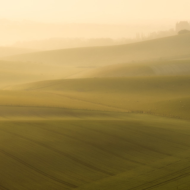 """""""Misty sunrise at South Downs"""" stock image"""