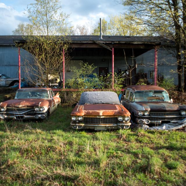 """""""Abandoned Repair Lot"""" stock image"""