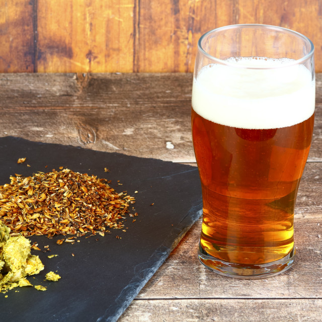 """""""Pint glass filled with beer at the side of a slate filled with hops and brewers barley malt"""" stock image"""