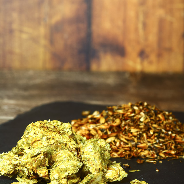 """""""Close up of brewing hops and crystal malt grain the raw ingredients used in brewing beer"""" stock image"""