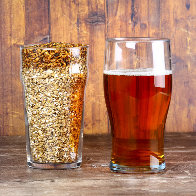 """""""Two pint glasses one filled with craft beer and another with barley grain the raw ingredients for making beer"""" stock image"""