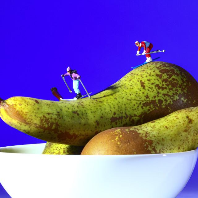 """Miniature figure people skiing on a fresh pear"" stock image"