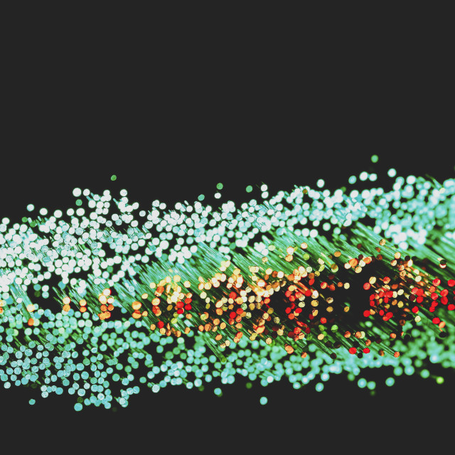 """""""Colourful fibre optic strands with a matt filter applied"""" stock image"""