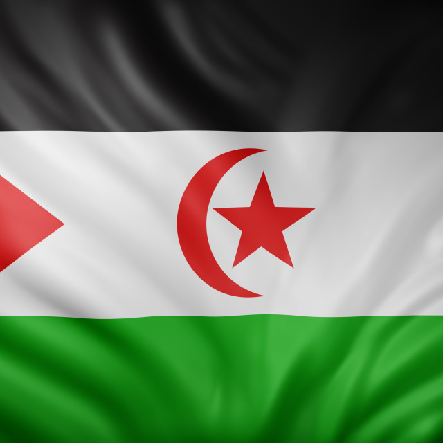 """Sahrawi Arab Democratic Republic 3d flag"" stock image"