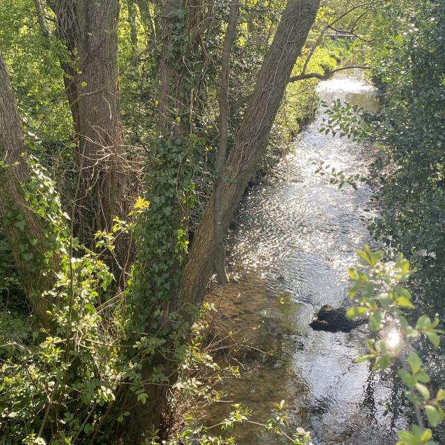"""Langley Stream, Middleton, May 2021"" stock image"