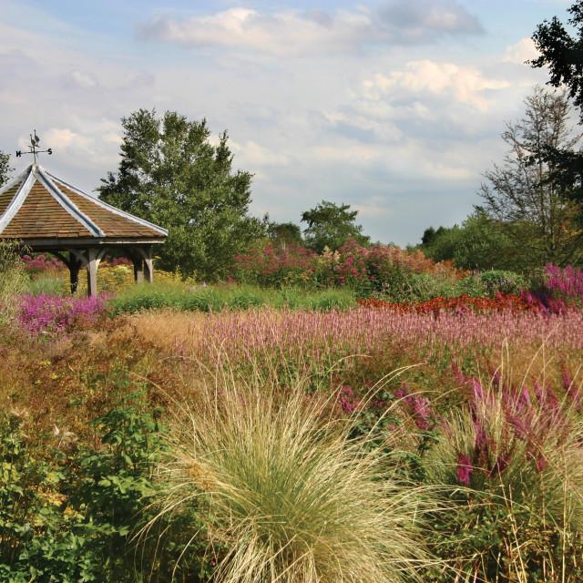 """Millennium Garden"" stock image"