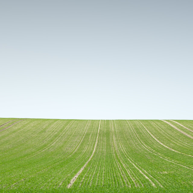 """Green Field"" stock image"