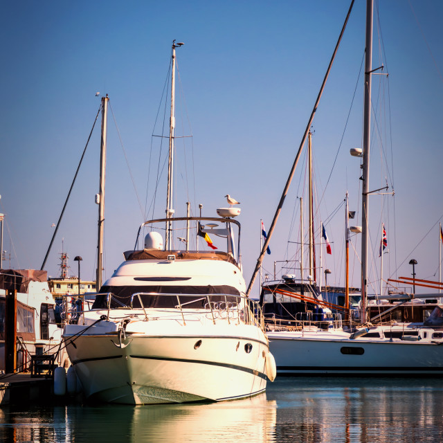 """""""Harbour life"""" stock image"""