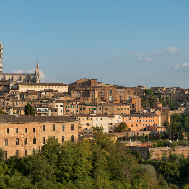 """""""Panoramic cityscape of the historical town of Siena central Tuscany, Italy"""" stock image"""
