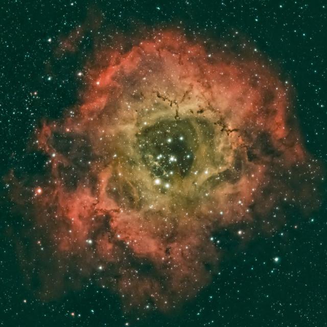 """The Rosette Nebula"" stock image"