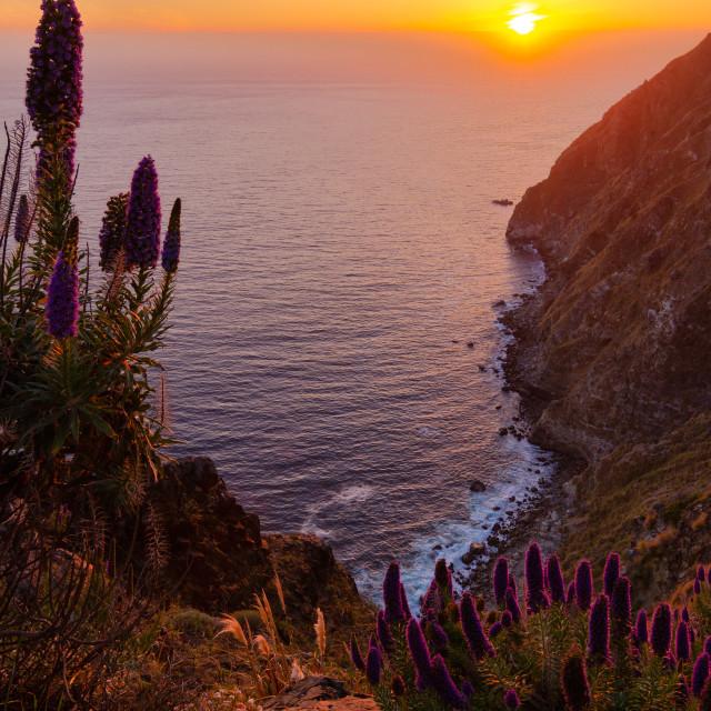 """Big Sur Sunset"" stock image"
