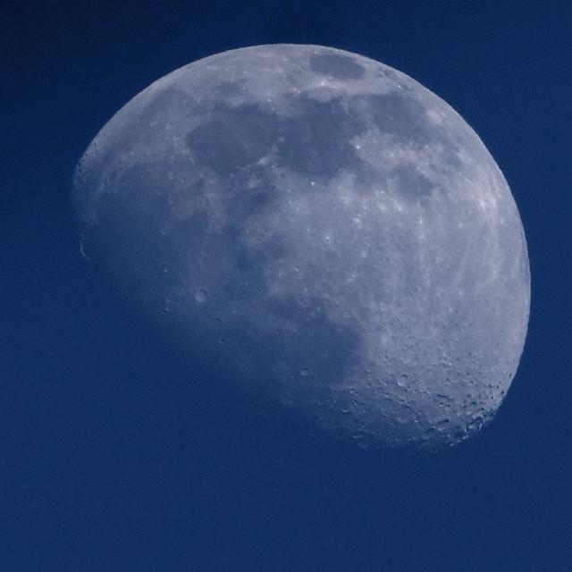 """Twilight Moon"" stock image"