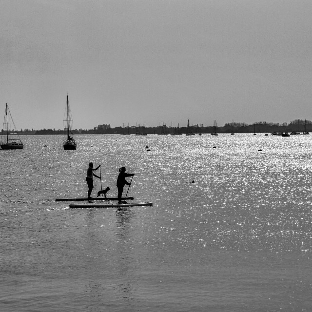 """""""Paddle Boarders"""" stock image"""