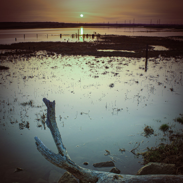 """""""Marshland Sunset"""" stock image"""