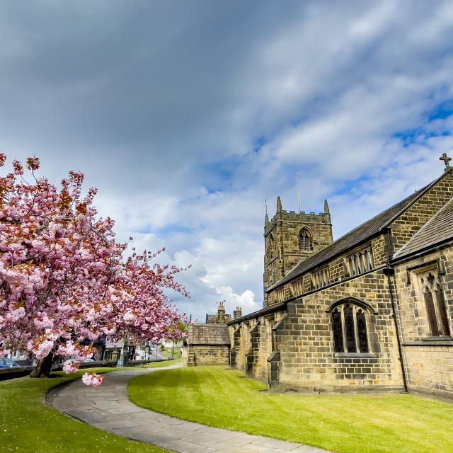"""All Saints Parish Church with Cherry Blossom Ilkley"" stock image"