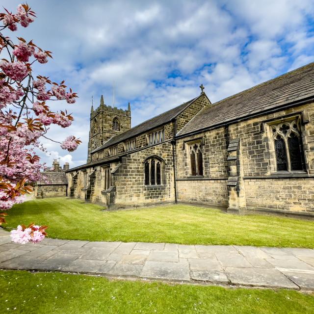 """All Saints Parish Church with Cherry Blossom. Ilkley"" stock image"