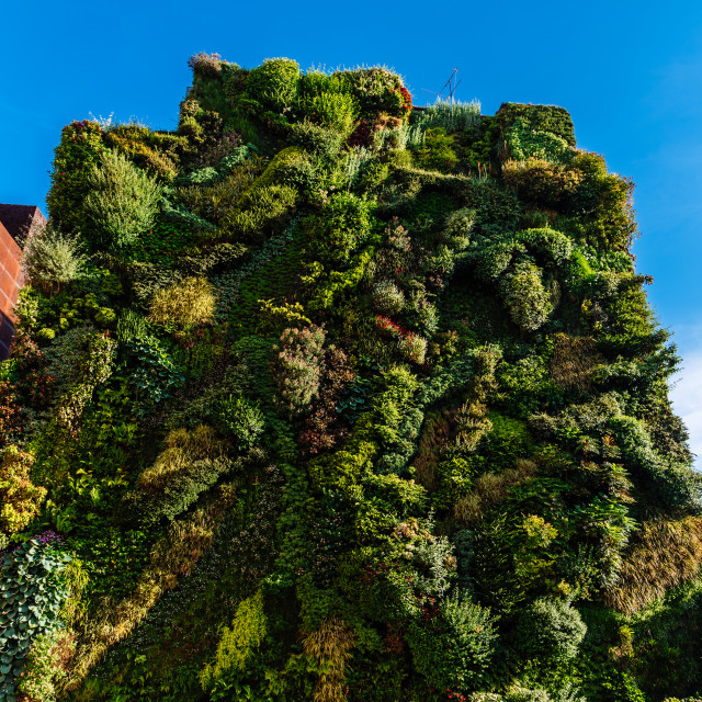 """""""Outdoors view of CaixaForum building in Madrid"""" stock image"""