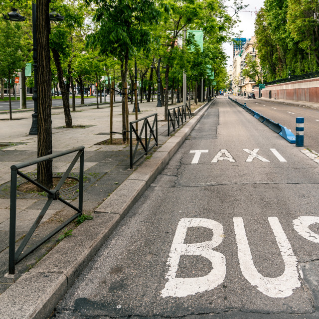 """""""Bus and taxi sign painted on asphalt."""" stock image"""