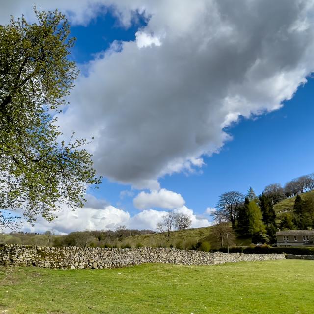 """Dales Way Walk, Woodhouse Lane, Near Burnsall, Yorkshire."" stock image"