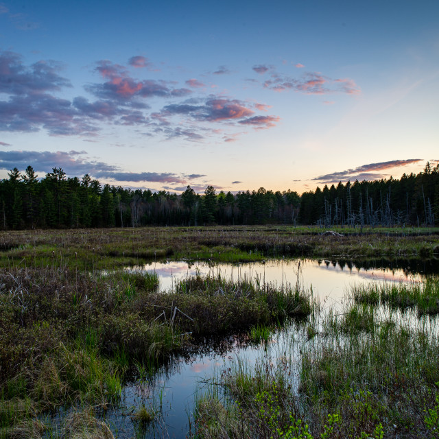 """""""Marsh Sunset - After"""" stock image"""