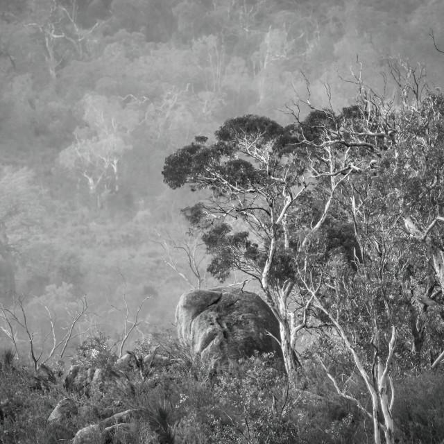 """""""Granite Boulder, Perth Hills"""" stock image"""