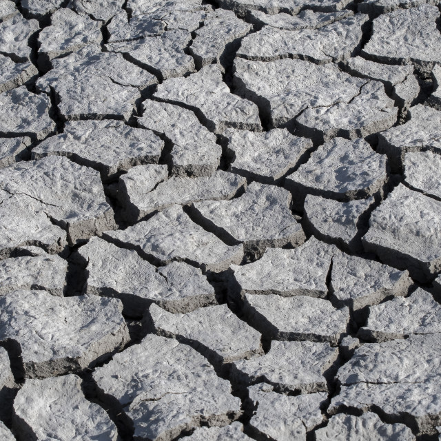 """""""Barren cracked land during prolonged dry spell"""" stock image"""