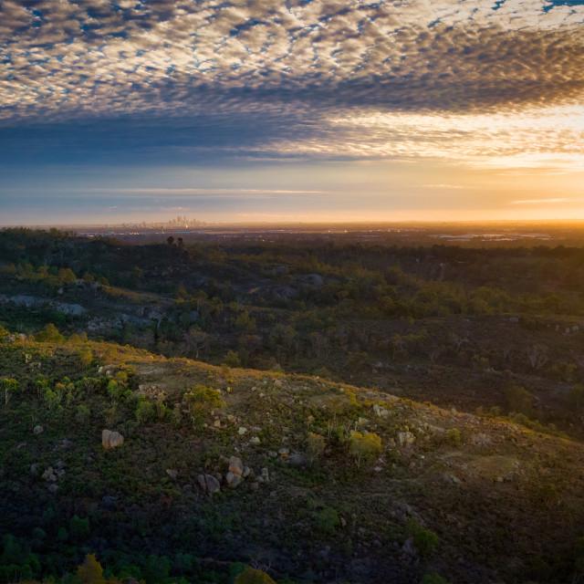 """""""Sunlit Bushland Ridge"""" stock image"""