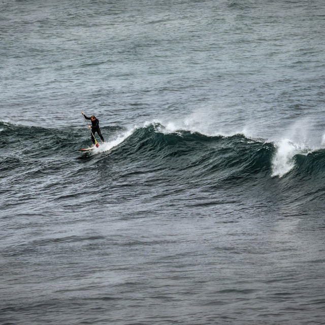 """""""Lone Stand Up Paddle Boarder on a Wave"""" stock image"""