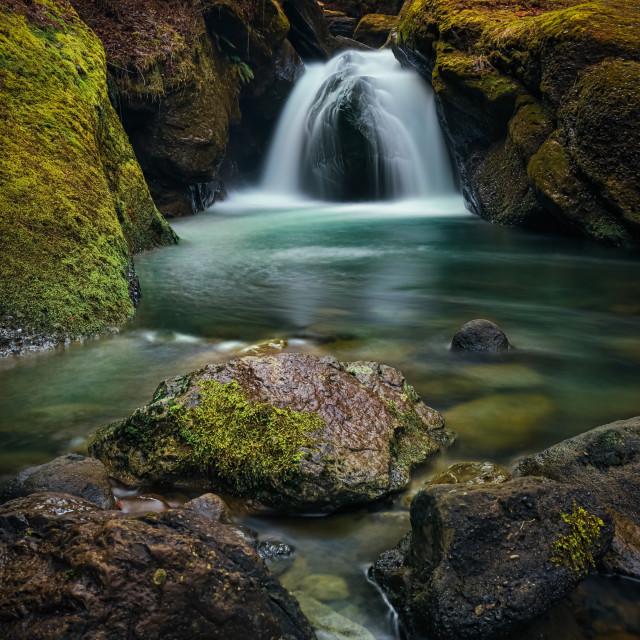 """Tranquil stream"" stock image"