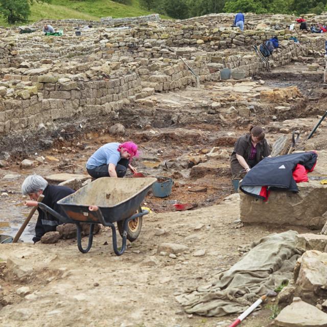 """""""Excavations volunteers"""" stock image"""