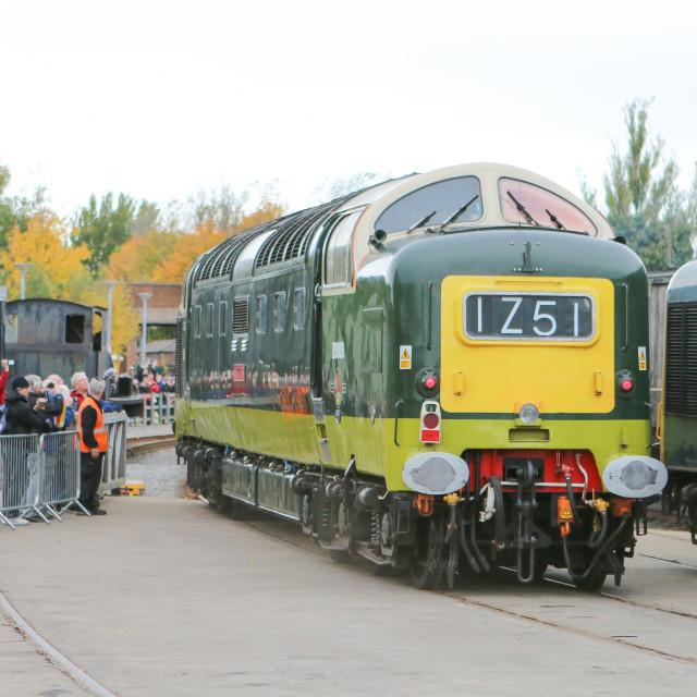 """""""D9009 at Shildon NRM"""" stock image"""