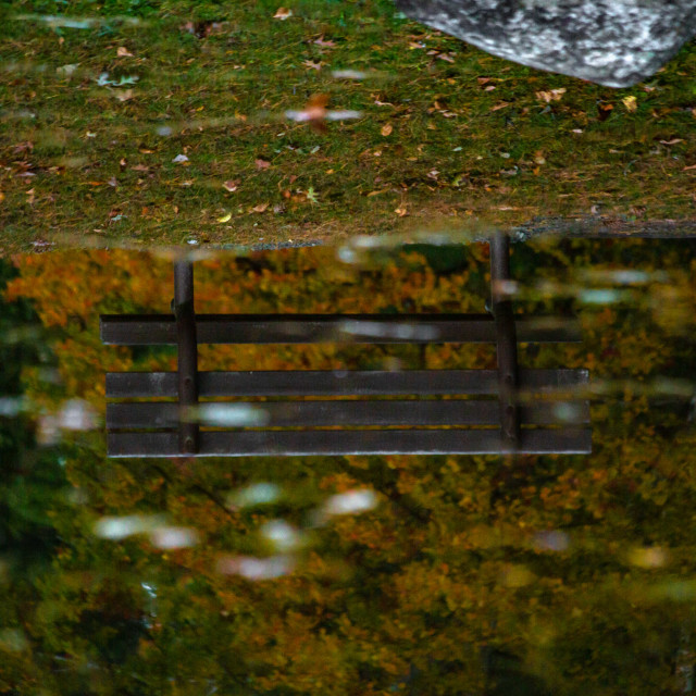 """""""Reflection of a Bench in a Pond in Autumn"""" stock image"""