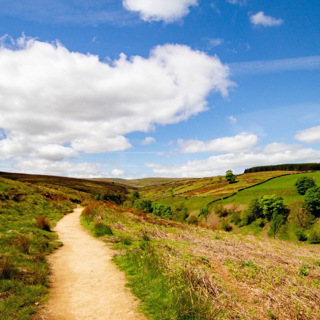"""""""Bronte Country, Footpath, The Bronte Way to Top Withens, a Derelict Farmhouse,"""" stock image"""