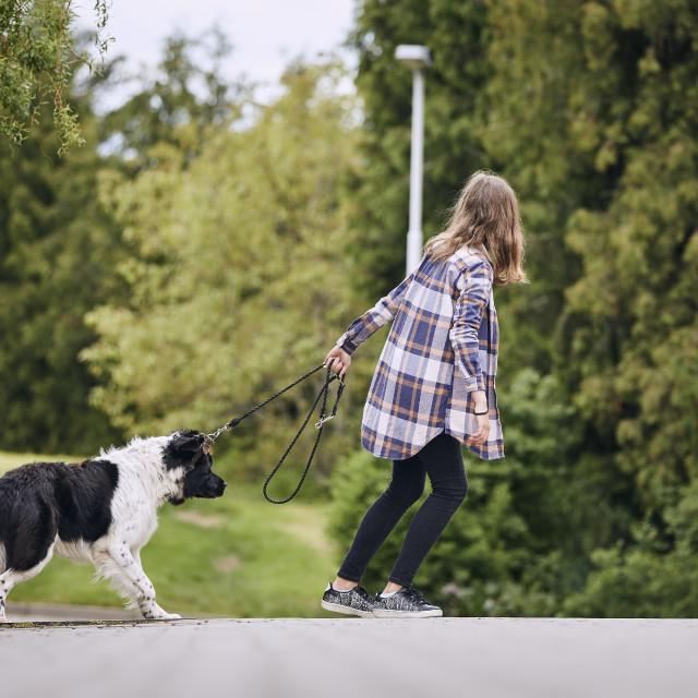 """Teenager girl pulling his stubborn dog"" stock image"