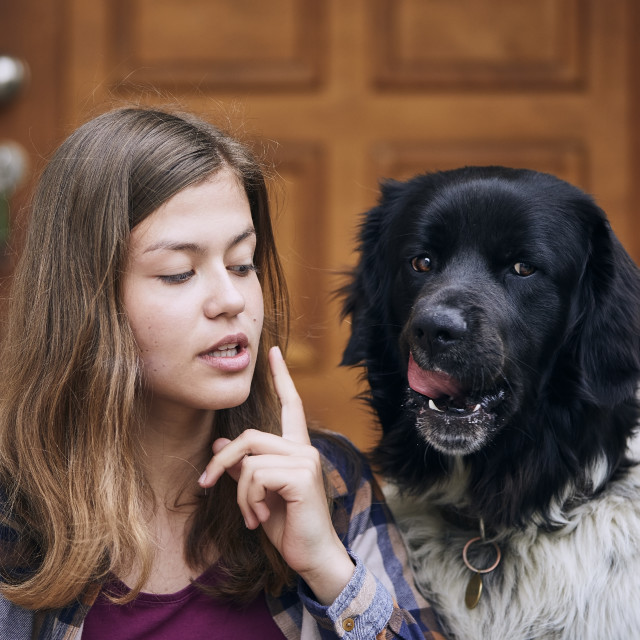 """""""Funny portrait of teenager girl with her dog"""" stock image"""