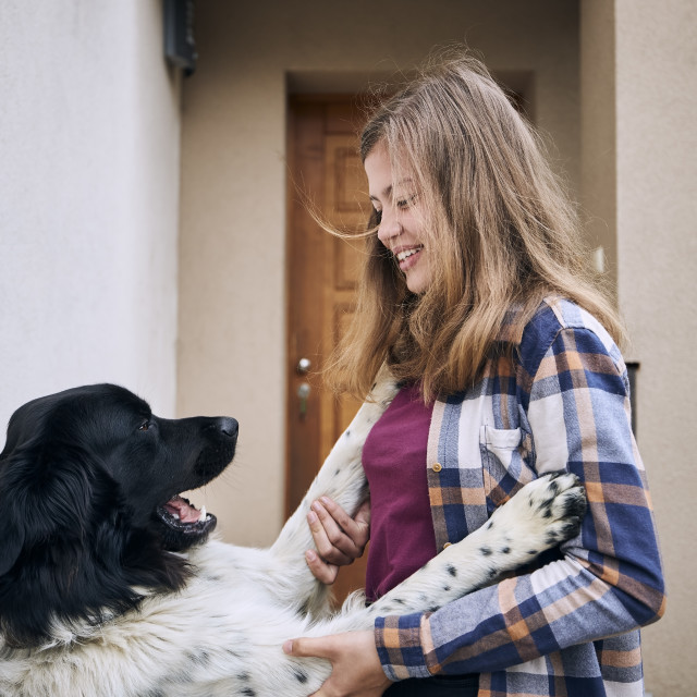"""""""Teenage girl coming home and welcoming with her dog"""" stock image"""