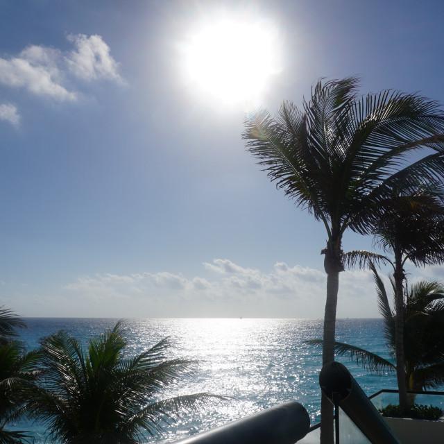 """Good morning, Caribbean!"" stock image"