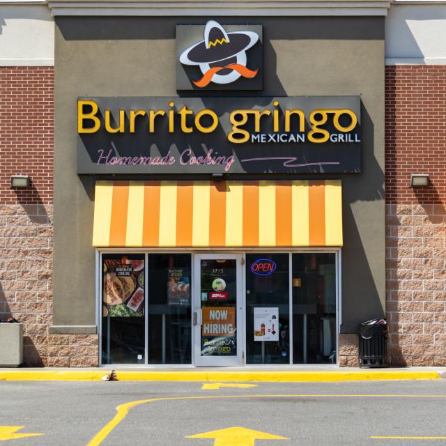 """""""Burrito Gringo Mexican Grill restaurant in Ottawa"""" stock image"""