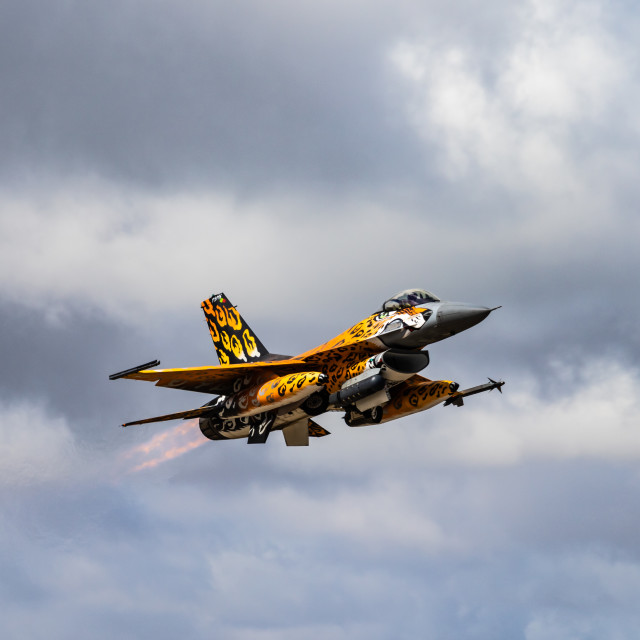 """""""Take-off of a Portuguese F-16 fighter jet during NATO Tiger Meet 2021"""" stock image"""