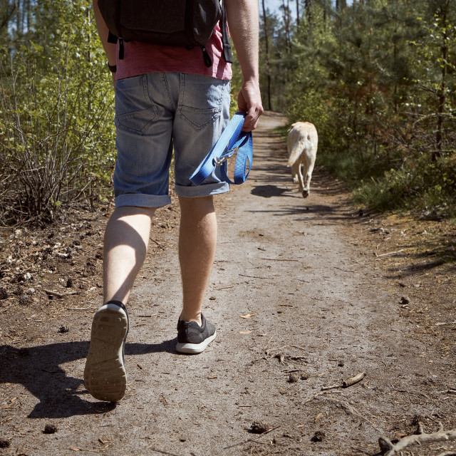 """""""Man walking with dog on footpath in forest"""" stock image"""