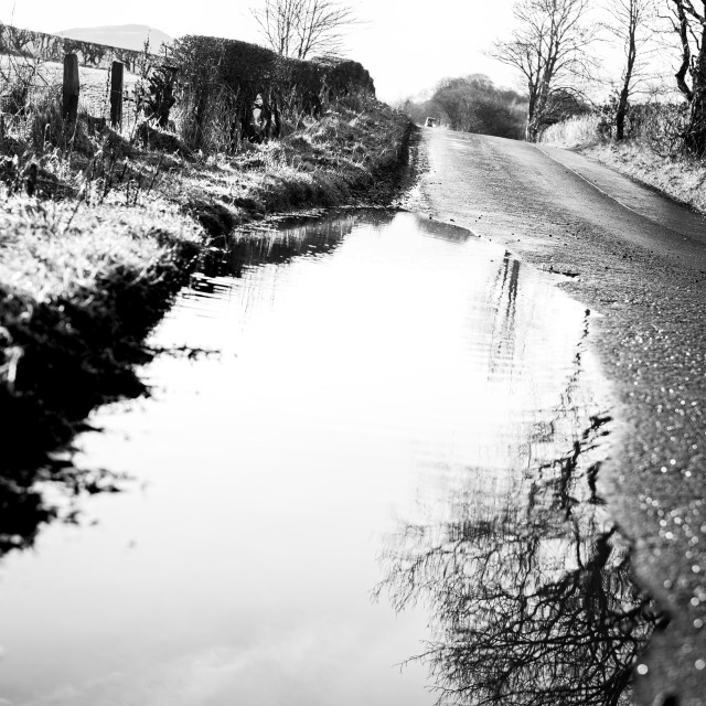 """""""Road Puddle"""" stock image"""