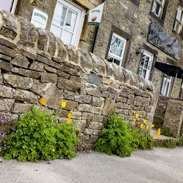 """Yorkshire Dales Cottage Shops, Burnsall."" stock image"