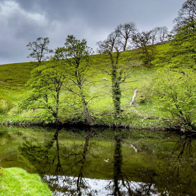 """River Wharfe Reflections, near Burnsall, Yorkshire Dales."" stock image"
