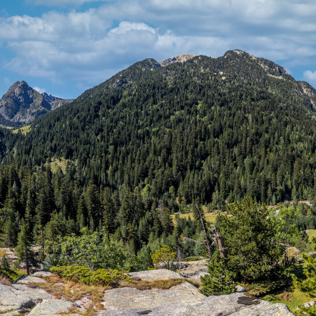 """""""Beautiful Pyrenees mountain landscape from Spain, Catalonia."""" stock image"""
