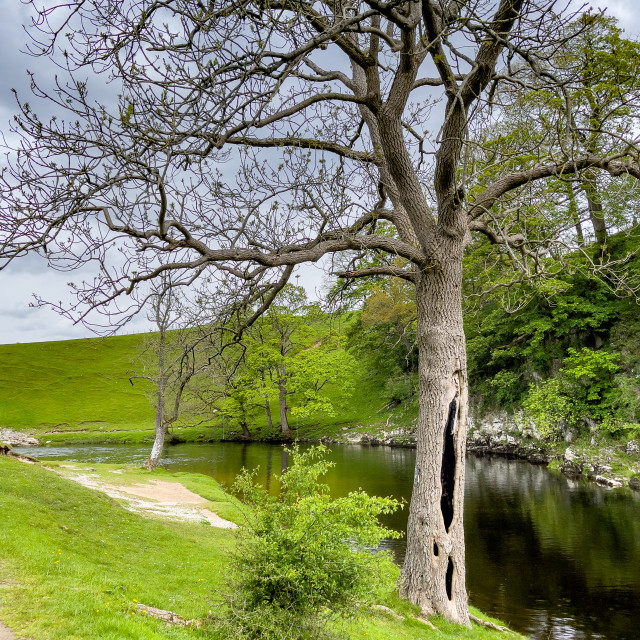 """""""River Wharfe near Burnsall in the Yorkshire Dales."""" stock image"""