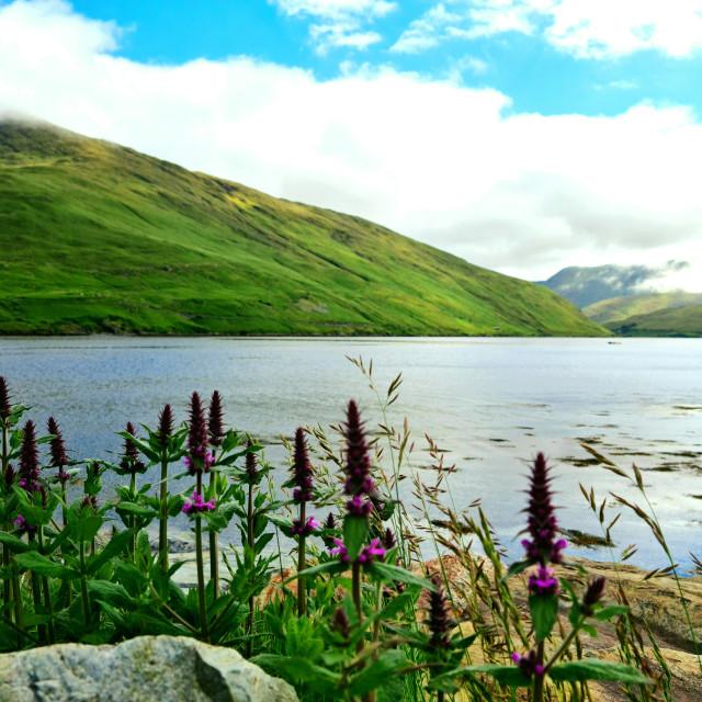 """Killary fjord views"" stock image"